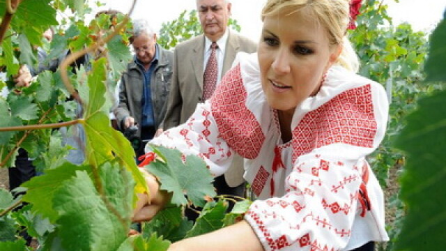 Ministrul Elena Udrea a fost la cules de struguri, imbracata in ie! FOTO - Imaginea 2
