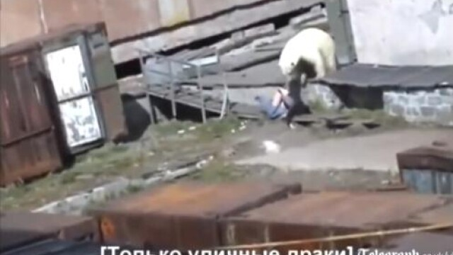 VIDEO. O femeie e mutilata de urs intr-un ORAS din Rusia. O sticla de vodca i-a salvat viata