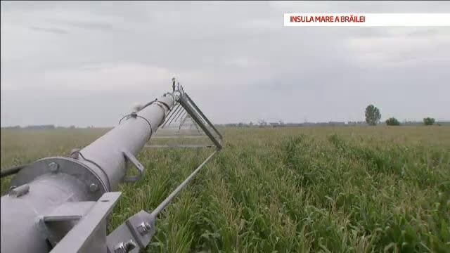 Romania, blestemul pamantului - III. Romanii care au inteles cum pot sa faca bani din agricultura