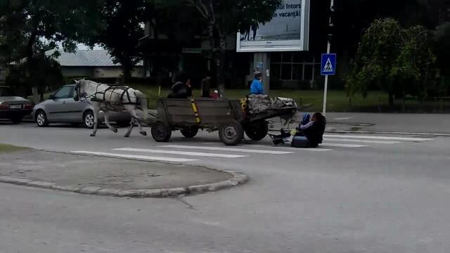 tigani, Slatina