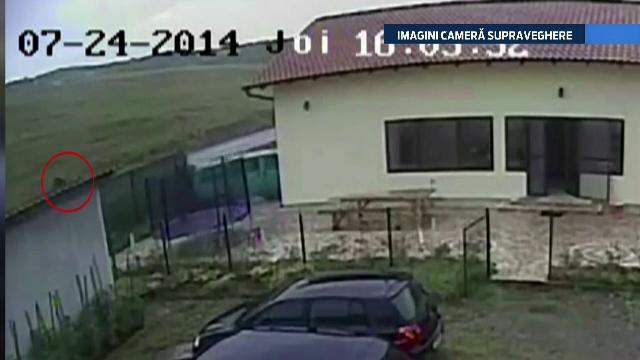 IMAGINI camera de supraveghere. Un sofer si fetita lui, la un pas de moarte din cauza unor cai uitati in mijlocul drumului - Imaginea 2