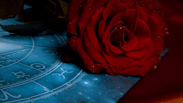 Horoscop zilnic 29 septembrie 2014. Varsatorii rezolva un conflict cu cineva, iar Gemenii primesc oferte tentante de lucru