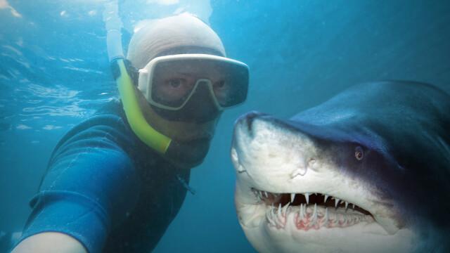 selfie cu rechinul sub apa