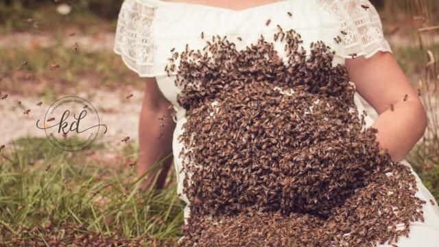 Ședința foto uluitoare realizată de o gravidă. De ce s-a acoperit cu 20.000 de albine