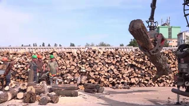 85% din gospodăriile din mediul rural se încălzesc cu lemne. Cât plătesc românii