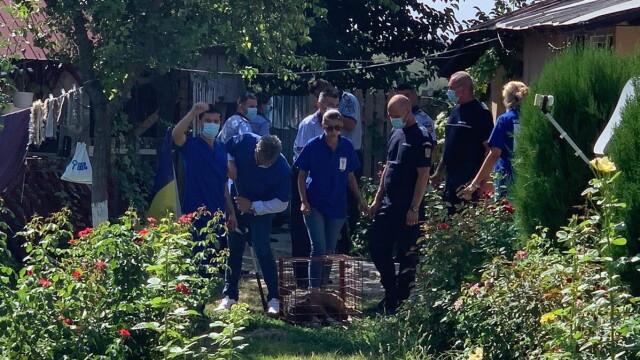 O femeie de 77 de ani din Giurgiu a fost ucisă de câinele Amstaff al fiului ei - Imaginea 2