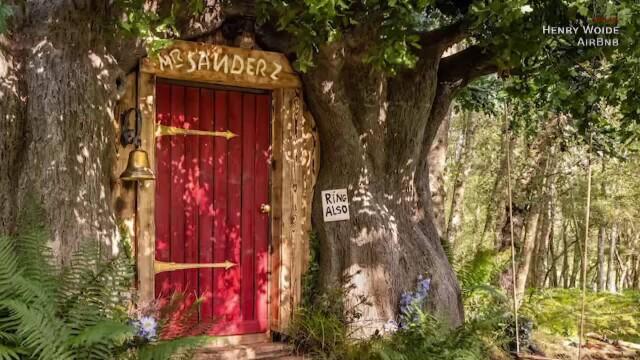 O casă care arată exact ca a lui Winnie de Pluș poate fi închiriată cu 95 de lire pe noapte. Unde este situată. GALERIE FOTO - Imaginea 5