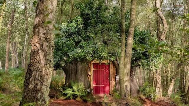 O casă care arată exact ca a lui Winnie de Pluș poate fi închiriată cu 95 de lire pe noapte. Unde este situată. GALERIE FOTO - Imaginea 6