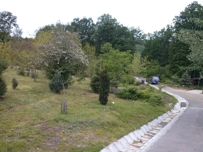 Alba, parc dendrologic