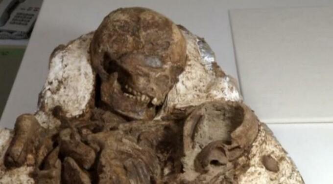 fosila taiwan