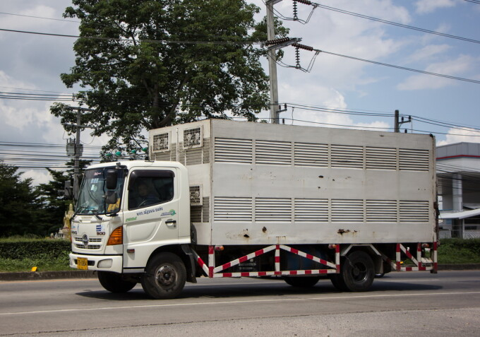 camion frigorific