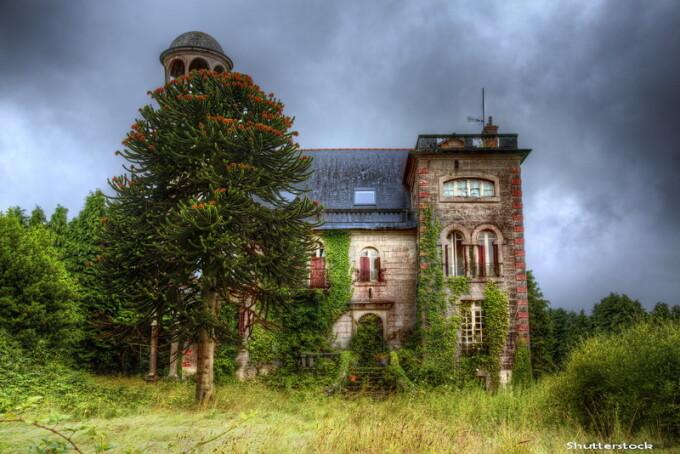 casa parasita- Shutterstock