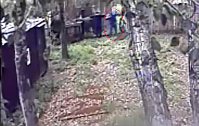 Rus atacat de urs