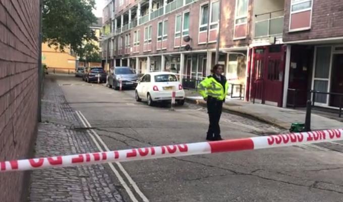 Adolescent de 16 ani, ucis cu maceta în Londra