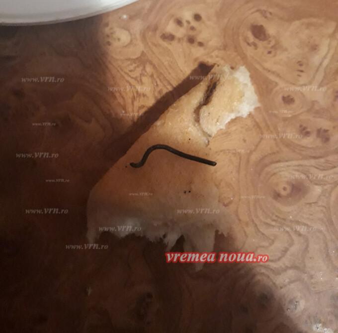 Pâine Vaslui