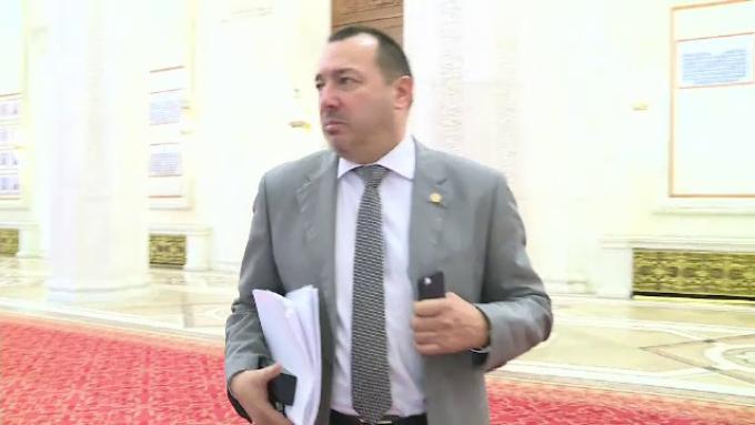 Deputatul PSD, Cătălin Rădulescu, proiect de lege, imunitate