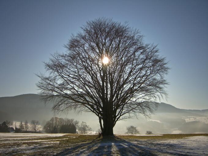 Imagini pentru Ultimul solstiţiu