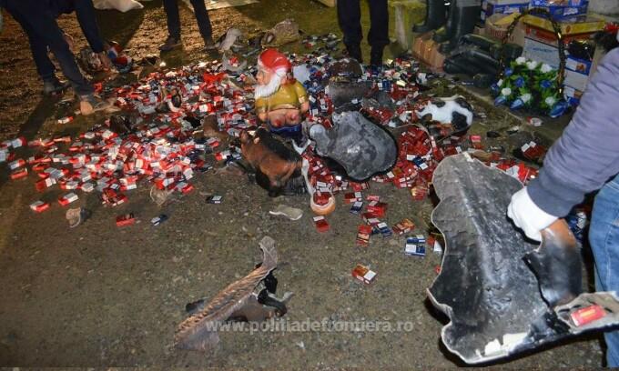 Mii de pachete de țigări de contrabandă ascunse în pitici de grădină, descoperite la Botoșani