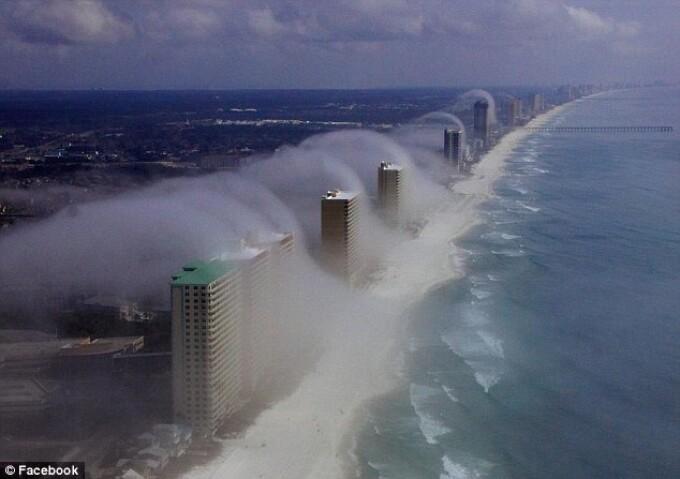 nori Florida