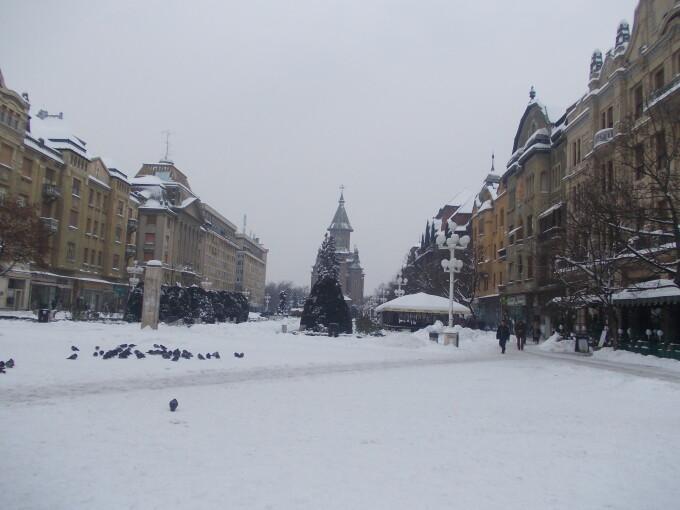 iarna timisoara