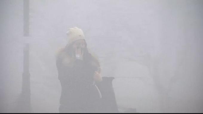 poluare