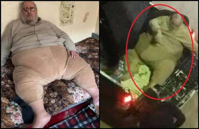 cum să-și piardă omul gras de spate)