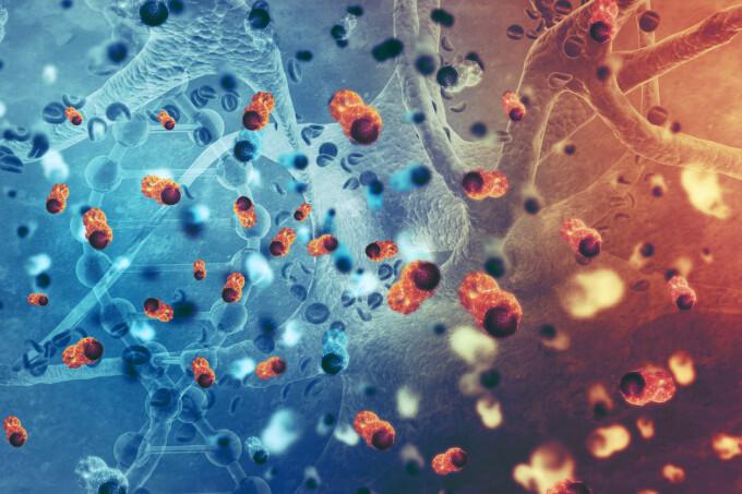 celule cancer