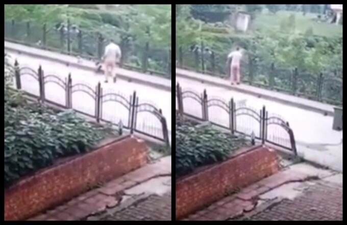 Un angajat de la salubritate mătură un cățel de pe stradă și-l aruncă de pe pod