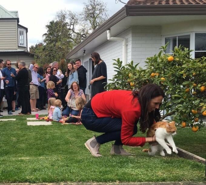 Paddles, pisica premierului Noii Zeelande - 2