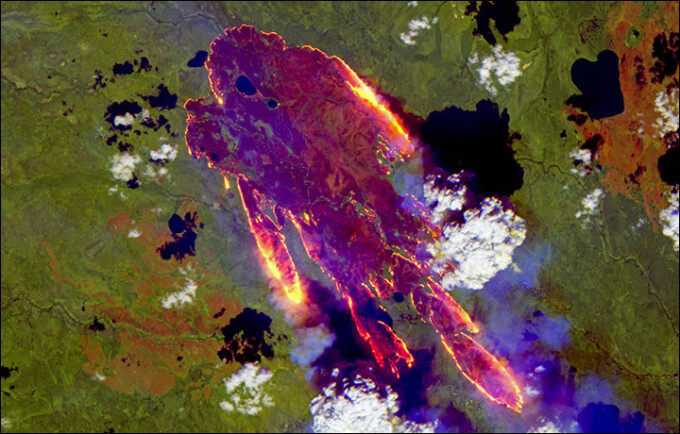 incendii rusia