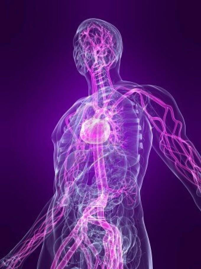 A fost descoperita o noua componenta a corpului uman. \