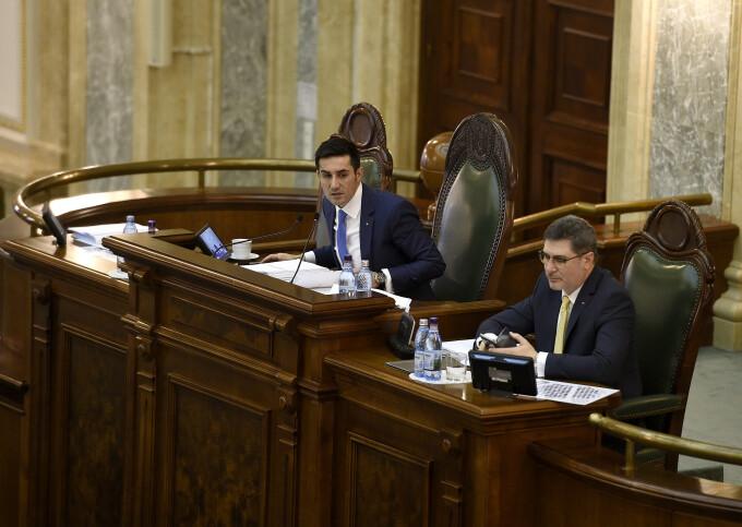 Claudiu Manda, Parlament