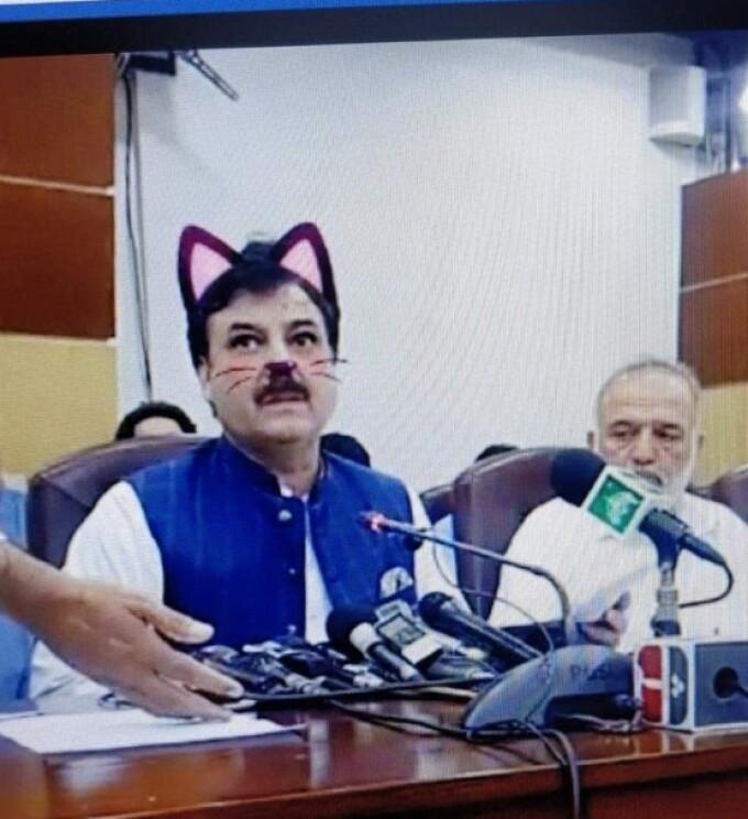 Politicieni cu mustăți și urechi de pisică, în timpul unei ședințe. Momentul, transmis live - 1