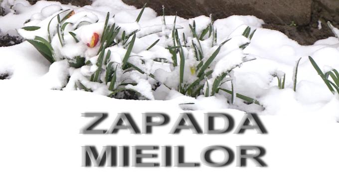 ZAPADA MIEILOR2