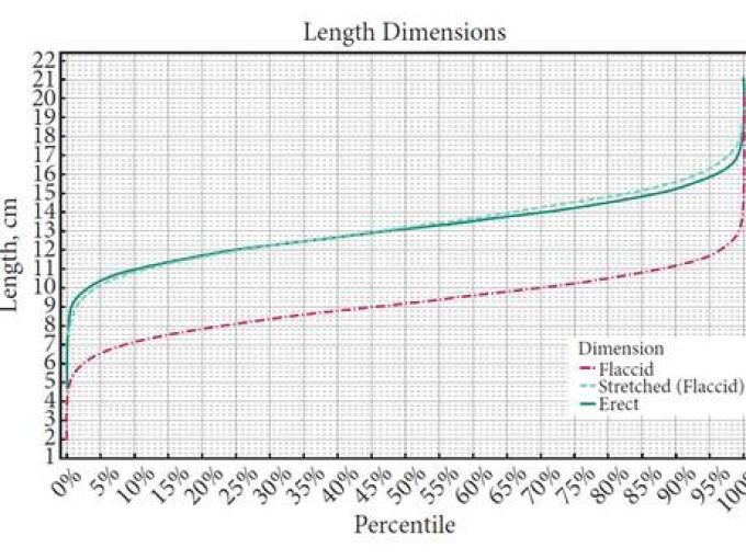 dimensiunea vizualizării penisului masculin