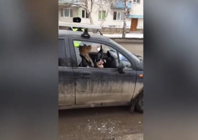 soferita beata Rusia