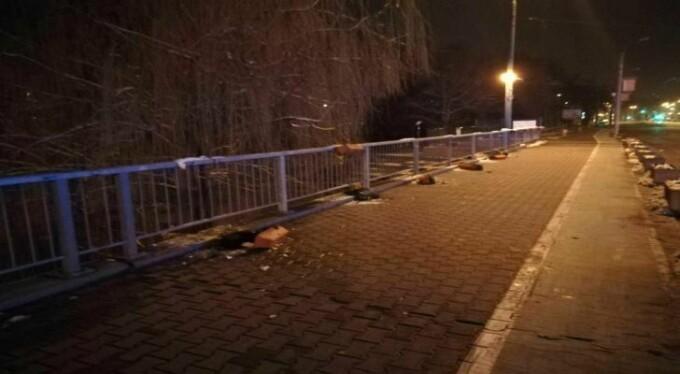 Student prins aruncând ghivecele de pe un pod din Timişoara. Explicaţia tânărului
