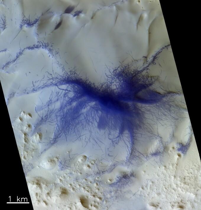 paianjenul de pe Marte