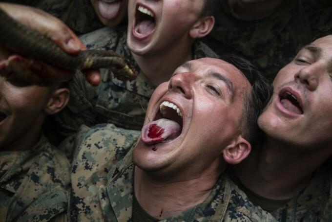 Pușcașii marini americani, somați să nu mai mănânce scorponi și sânge de cobra, în junglă
