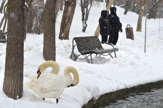 Iarna a revenit în România, în luna martie