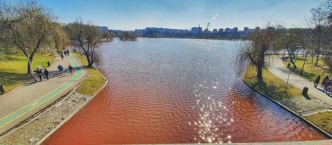 Apele Române au descoperit de ce apa din lacul IOR a devenit roșie. Este o algă, care nu e toxică