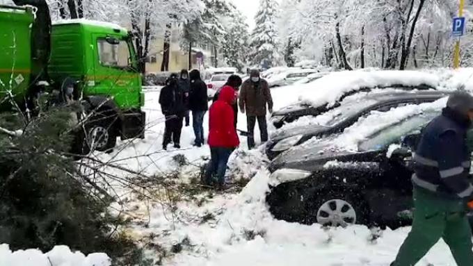 zăpezi