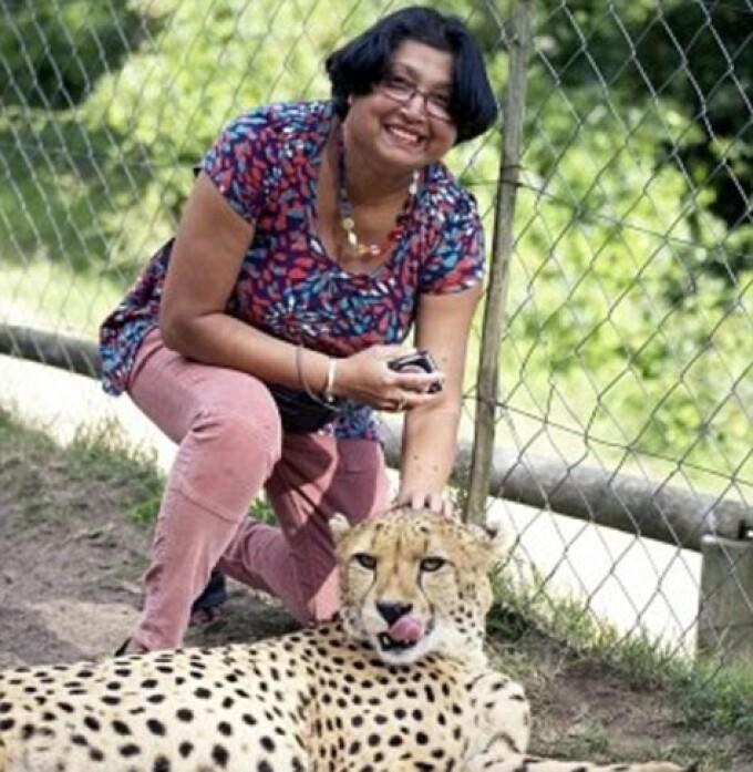 ghepard