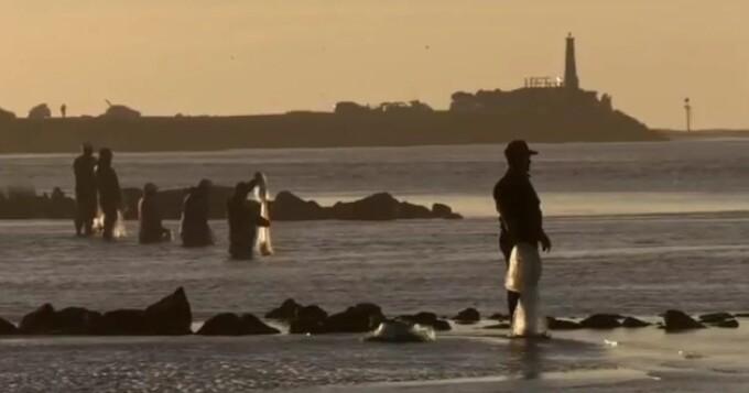 pescari, plase pescuit