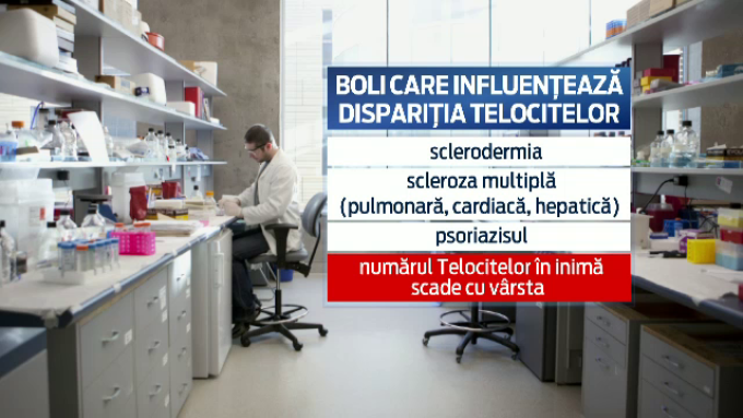 Boli care influenteaza disparitia telocitelor