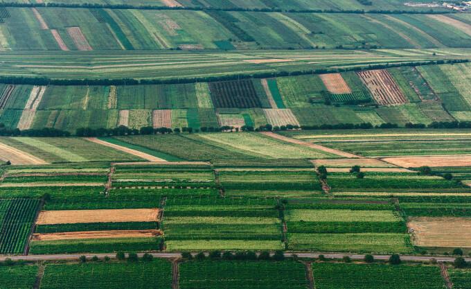 teren agricol romania