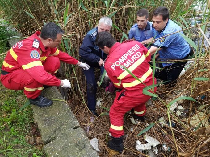 Intervenție de urgență în București, după ce o femeie a căzut în Lacul Fundeni