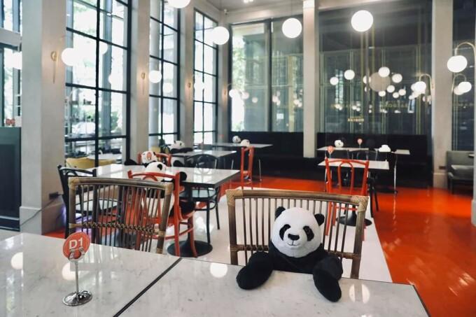 restaurant thailanda cu uris panda la masă