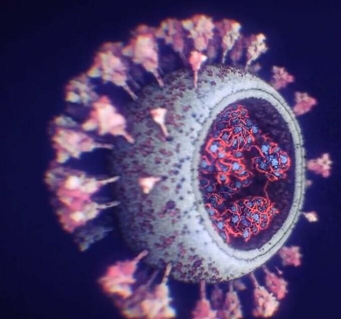 coronavirus microscop