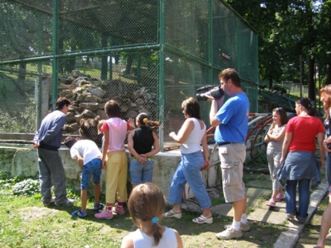 a ucis animale la gradina zoologica